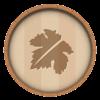 Grape_leaves